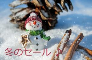 冬のセールプラン