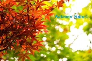 Autumnセール開催中